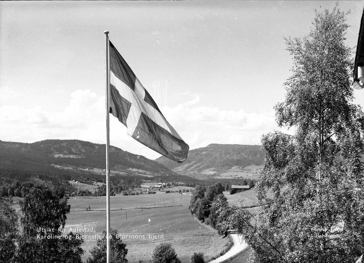Flagg, Aulestad, dal, bjørk, veg,