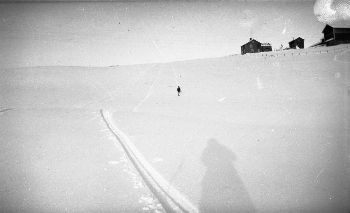 Vinter, landskap, skispor, gård,