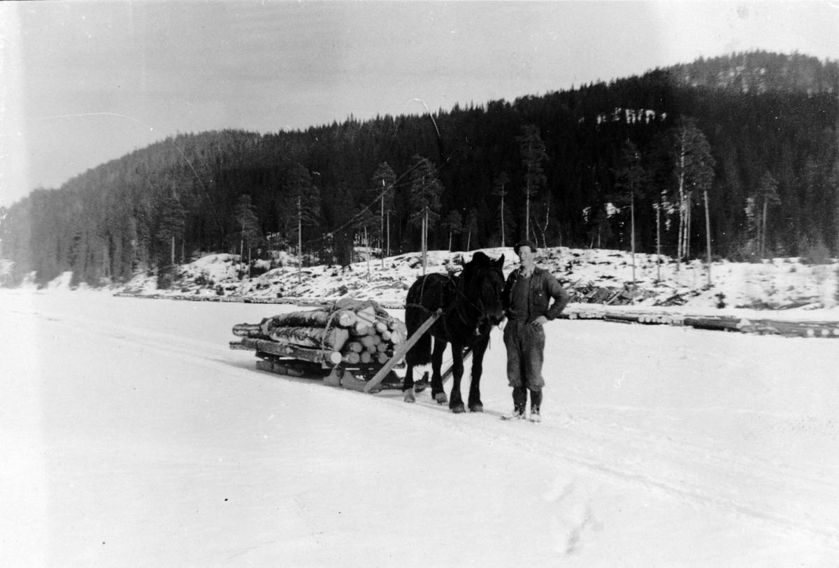 Tømmerkjøring (Bjarne Norderud).