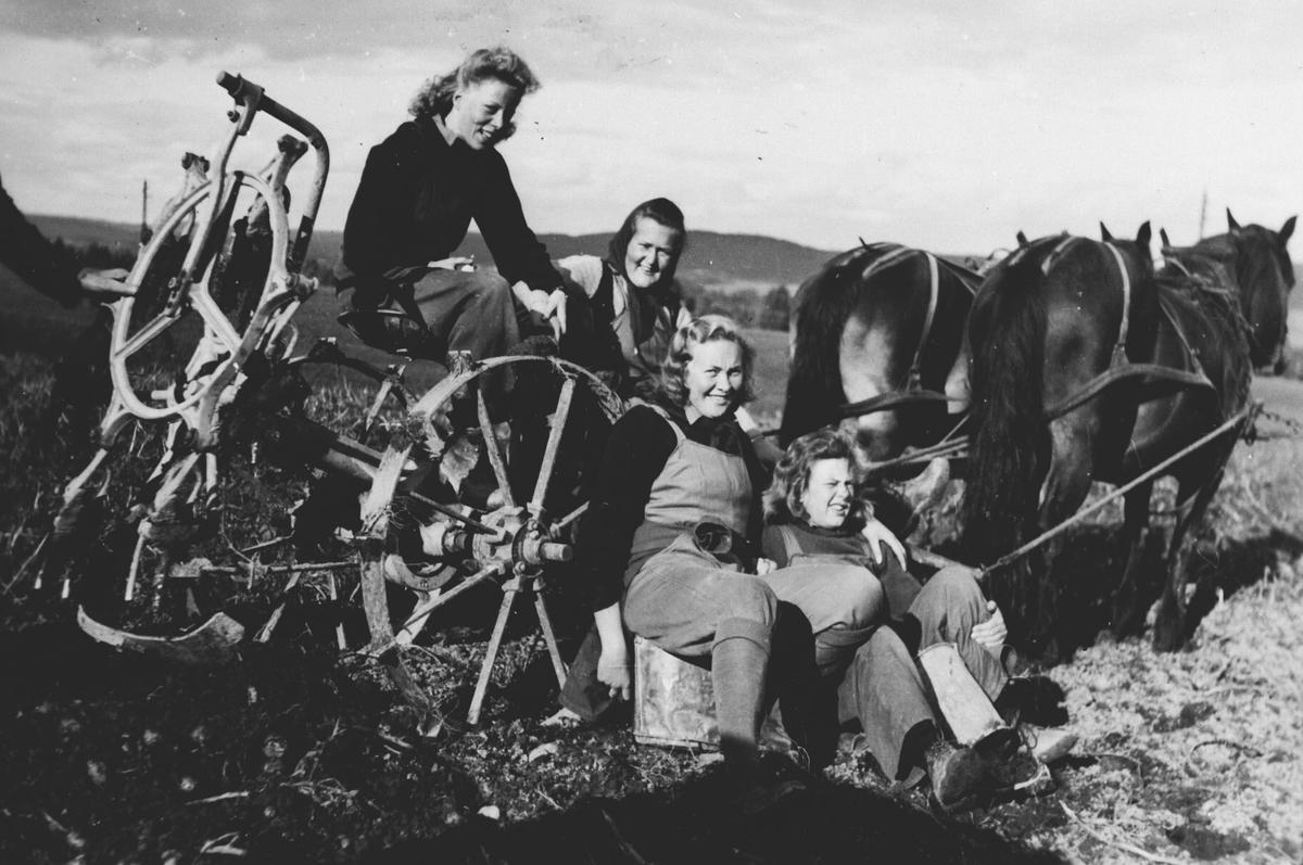 I potetåkeren med hester og potetopptaker. Jenter fra kvinnelig arbeidstjeneste.