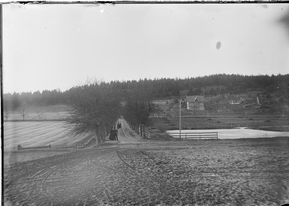 Utsikt utover alléen på Linderud Gård. Seks personer står inne i alleen.