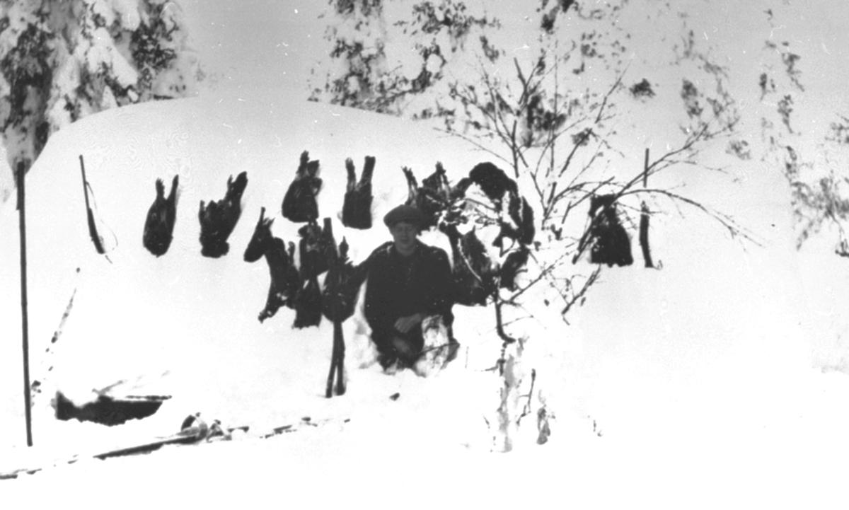 Storfugljakt, fangst i Granåsen, Navarhaugen, Philske sameie, Ringsakerfjellet, Åstadalen.
