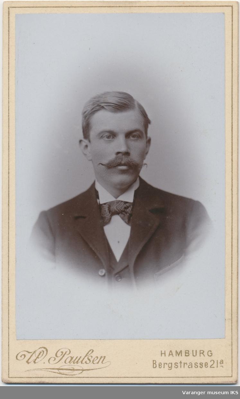 Portrett, Einar Nikolai Brodtkorb