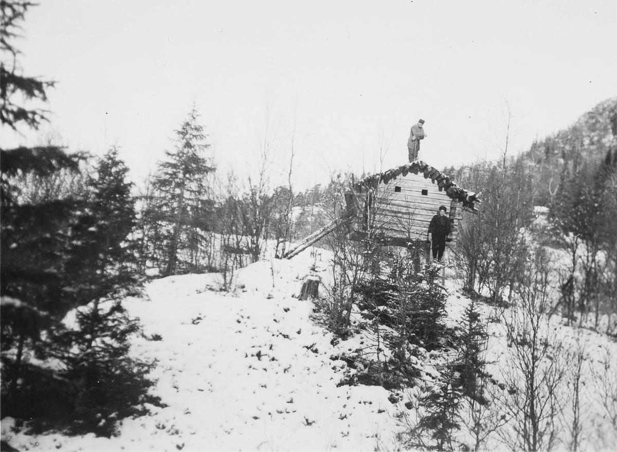 Samisk stabbur, njalle (njælla) på Bjørnheia, Vetterhusbotn i Nord-Trøndelag. Senere gjenreist på Sverresborg Trøndelag Folkemuseum