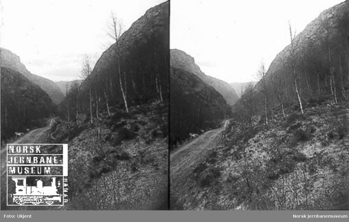 Fra Flekkefjordbanen før anlegget, utsikt nedover mot Drangsdalen fra Monatjernet