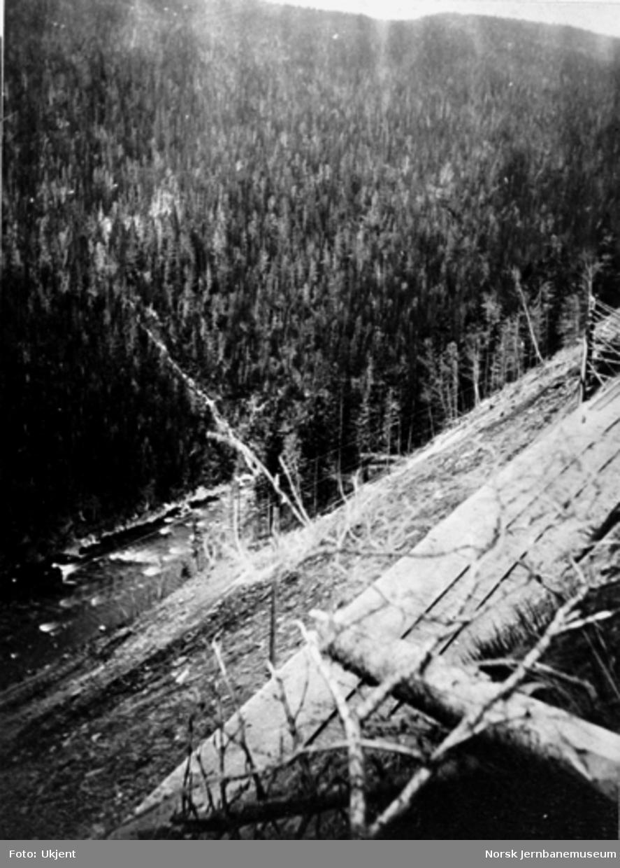 Jernbanelinjen i Drøiliene med utsikt mot Gaula i dalbunnen