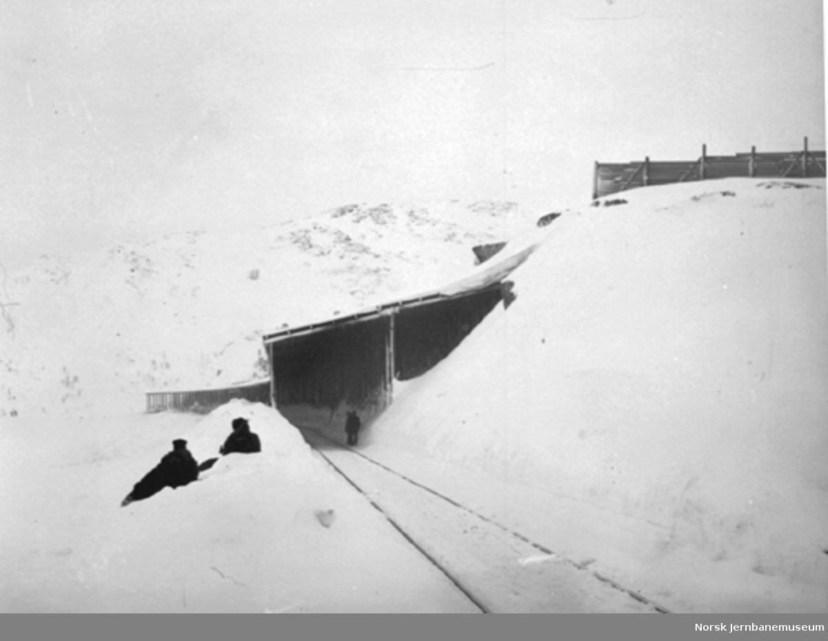 Snøoverbygg og snøskjermer på Ofotbanen