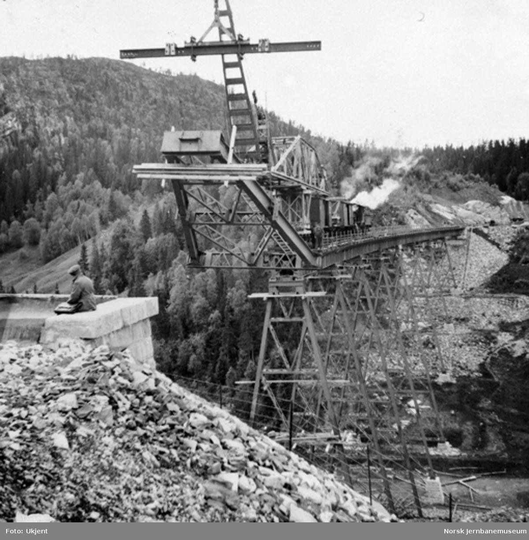 Trolldalen viadukt under bygging : pilar 9