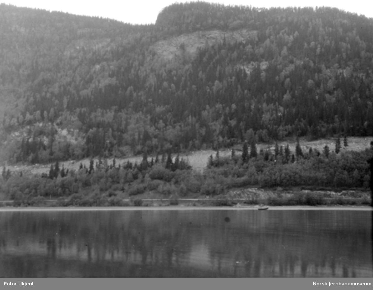 Årneslien ved Losnavannet : jernbanen i elvekanten