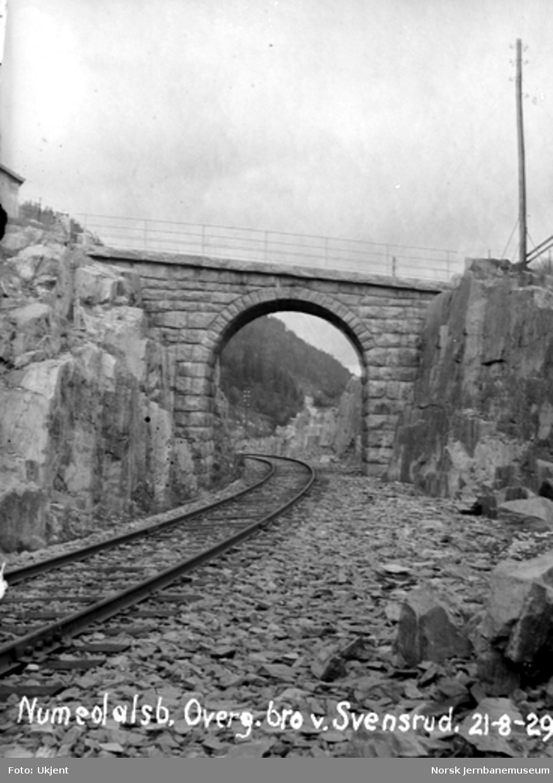 Overgangsbru ved Svendsrud