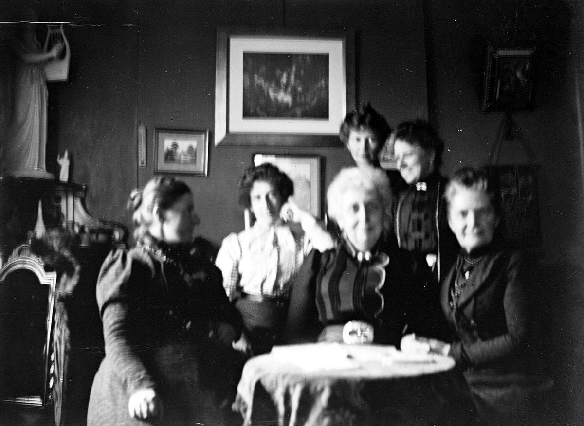 Interiør med 6 kvinner, ant. på kappelangården Bergenhus i Rakkestad hvor fotografens søster Louise var gift med res.kap. Olaf A.Holm (i tjeneste der 1884-97). Rikt møblert stue. Fra malerinne Juliane Fredrikke Langbergs (1856-1930) samling, tatt ca.1895-1910 med motiver fra slekt og venner samt steder tilknyttet samvær med disse.