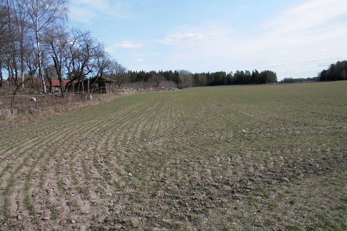 Arkeologisk undersökning, Veckholms-Ål, Veckholms socken, Uppland 2003