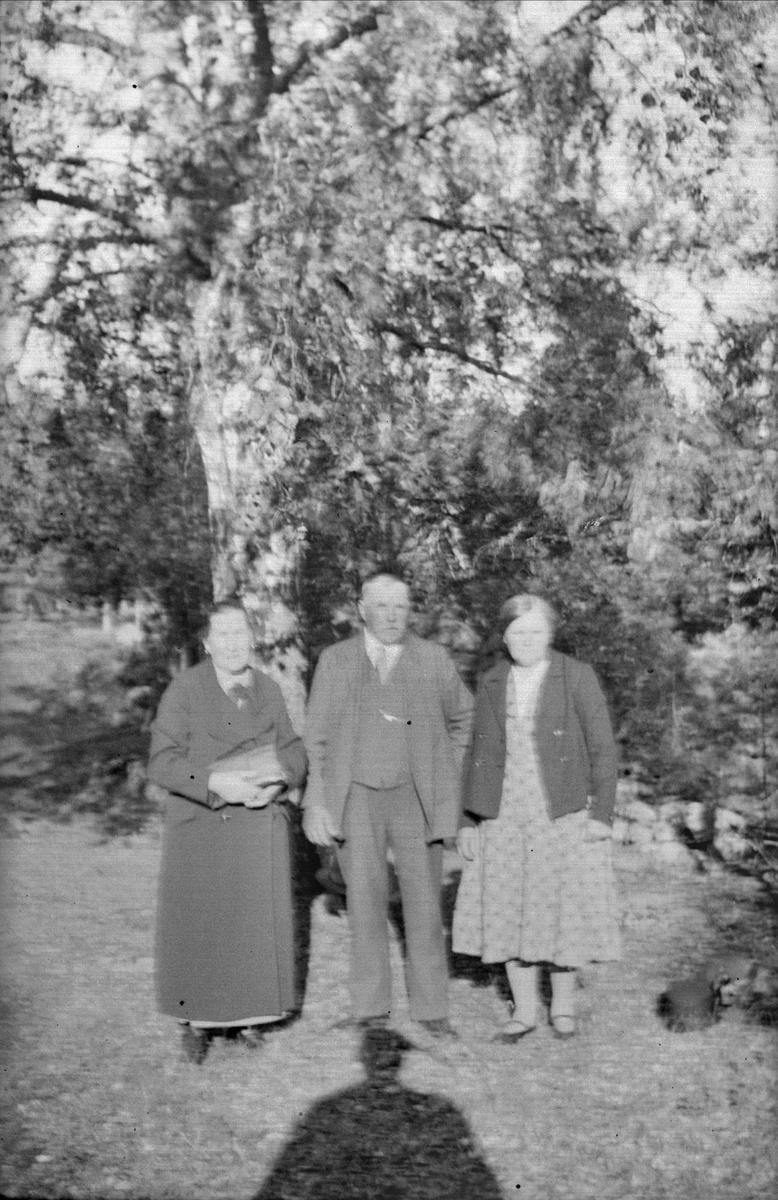 Grupporträtt - Thea Blom med gäster, Ytterkvarn, Österunda socken, Uppland 1940 - 50-tal
