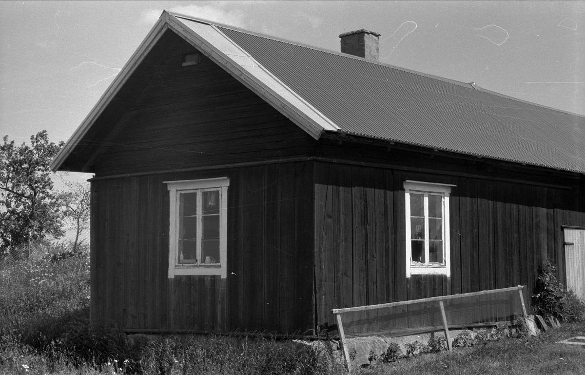 Bodlänga med vedbod och verkstad, Salsta 1:1, Björklinge socken, Uppland 1976