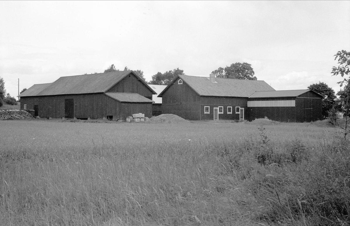 Loge, ladugård och maskinhall, Broby 3:3, Börje socken, Uppland 1983