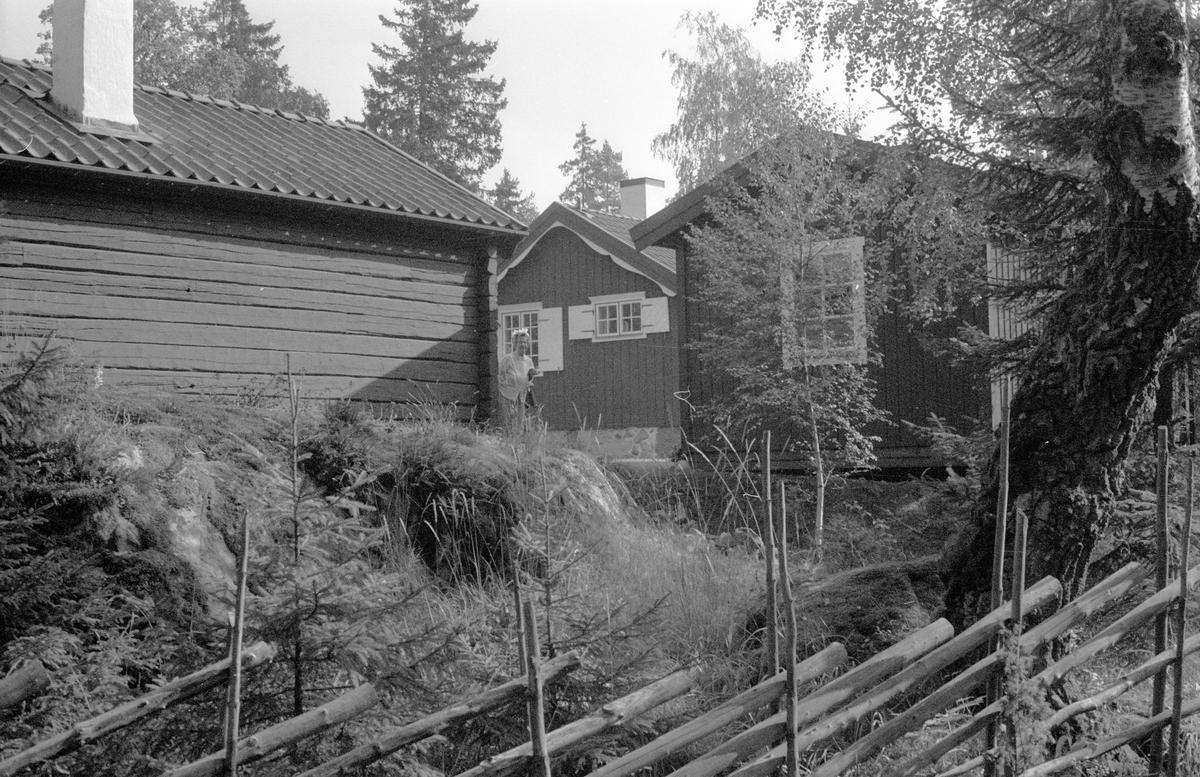 Vy över Majbacken, Marielund, Funbo socken, Uppland 1982
