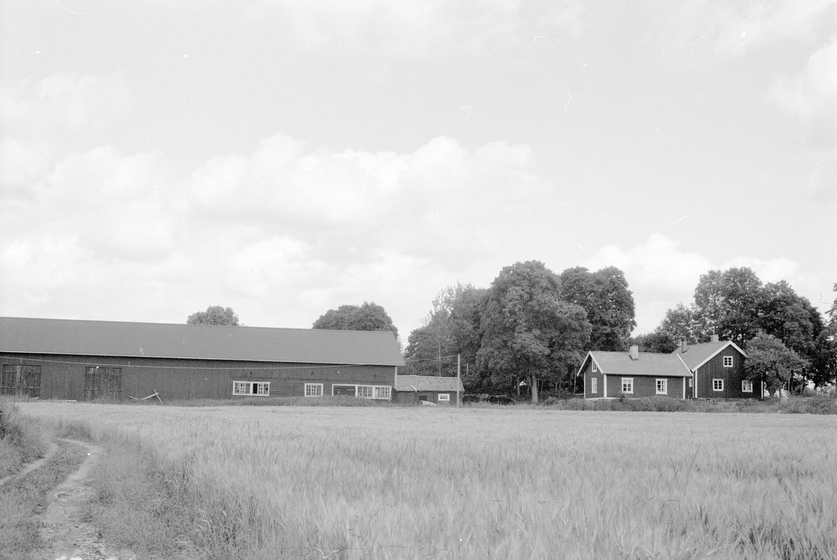 Vy över Knutby-Kumla 1:4, Kumla, Knutby socken, Uppland 1987