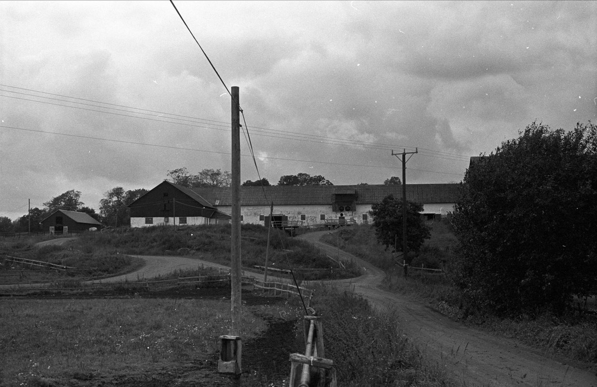 Ekonomibyggnader, Seglinge gård, Almunge socken, Uppland 1987