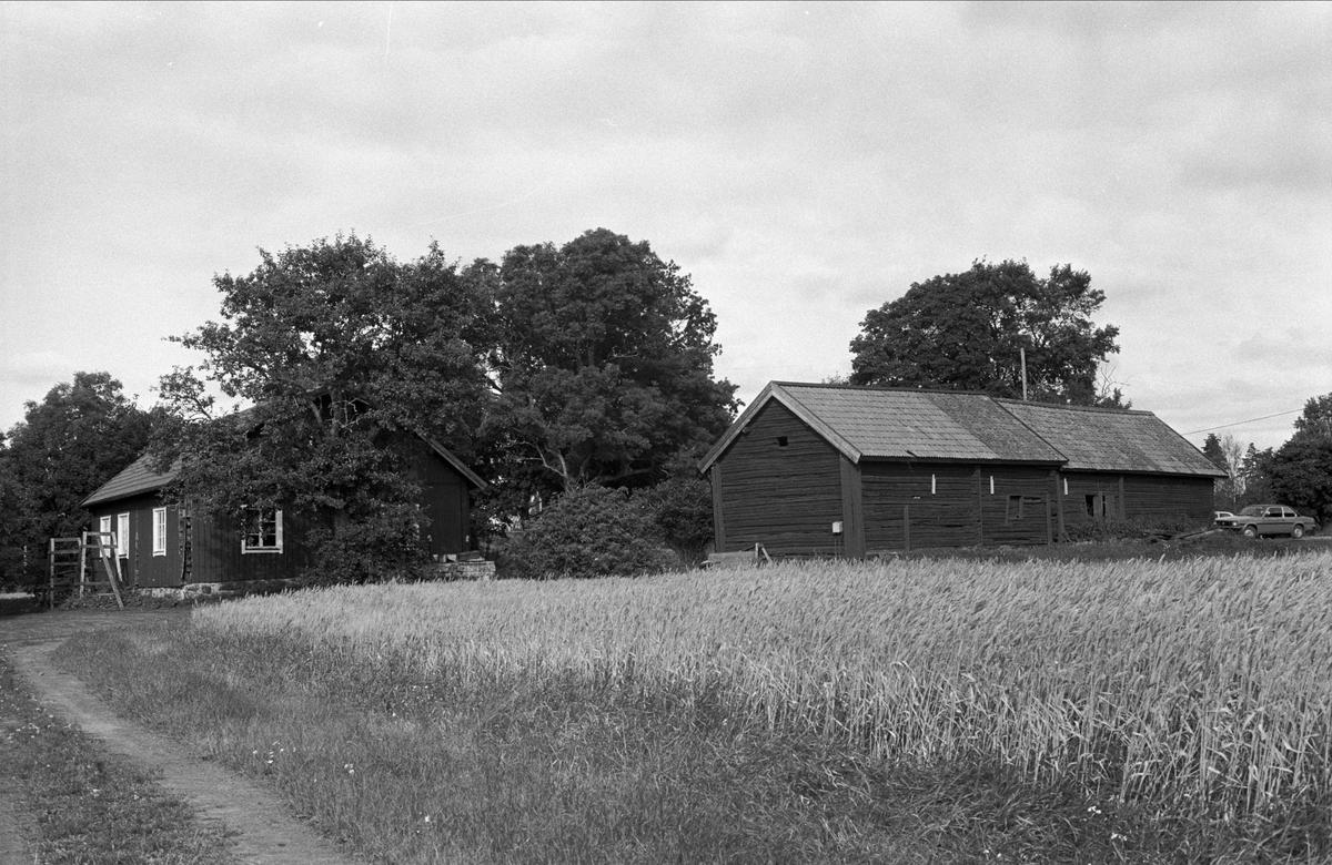 Bostadshus och bodlänga, Lilla Väsby 1:10, Almunge socken, Uppland 1987