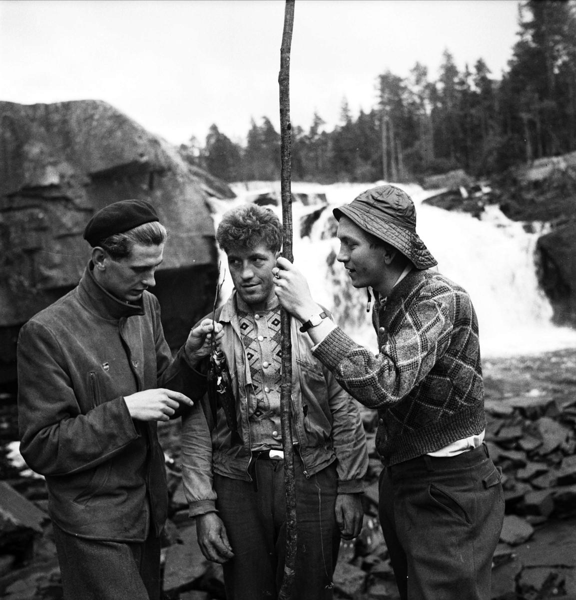 Tre män med fiskefångst, Norge 1947