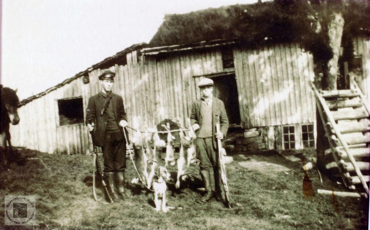 Jakttur på Løland i Grindheim.