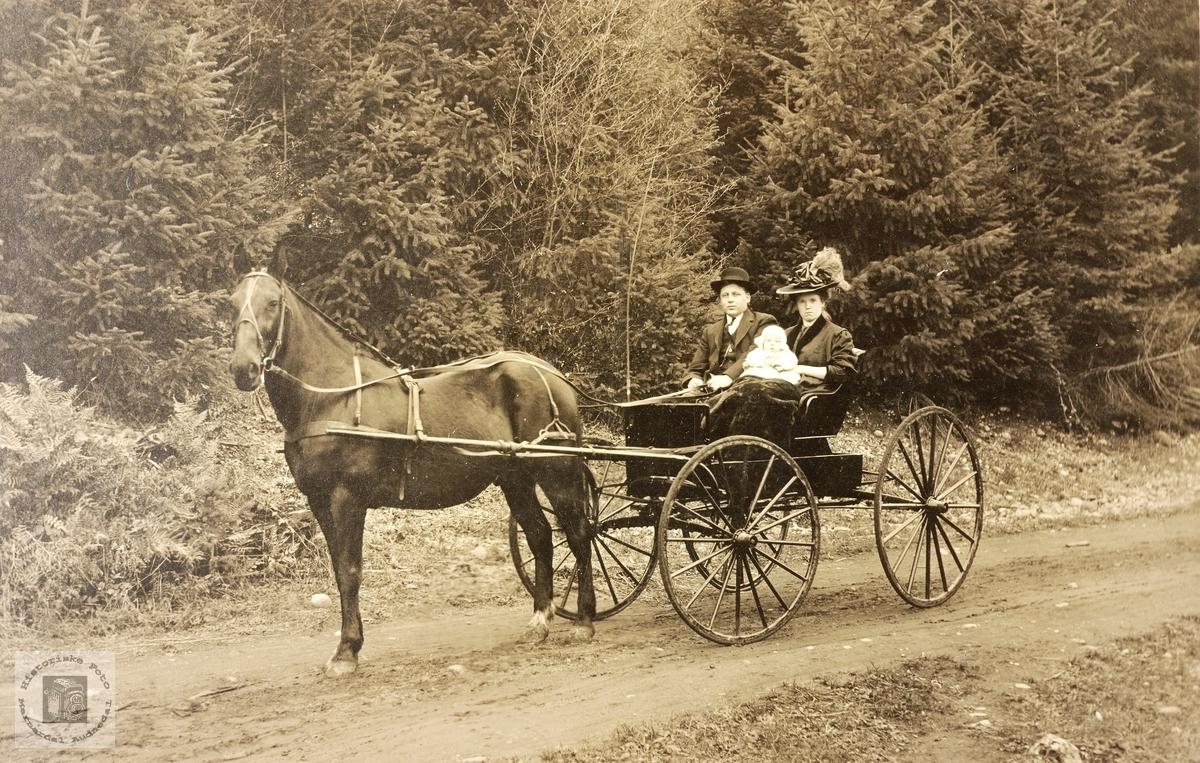 Familien Haaland på kjøretur med hest i USA.