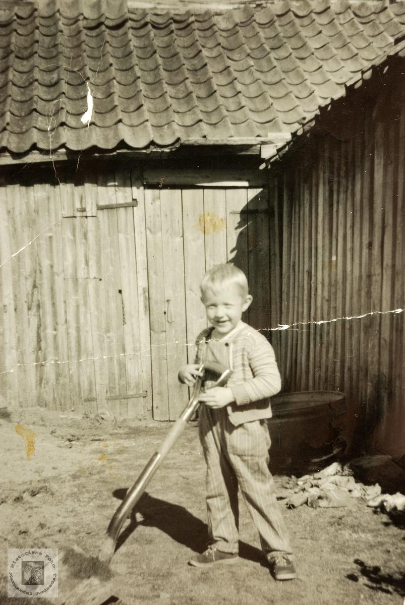 Her skal det jobbast! Sigvart Høyland med godt tak i spaden. Grindheim.