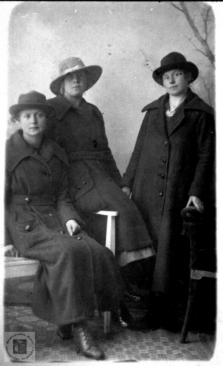 Portrett 3 unge damer trolig fra Grindheim.