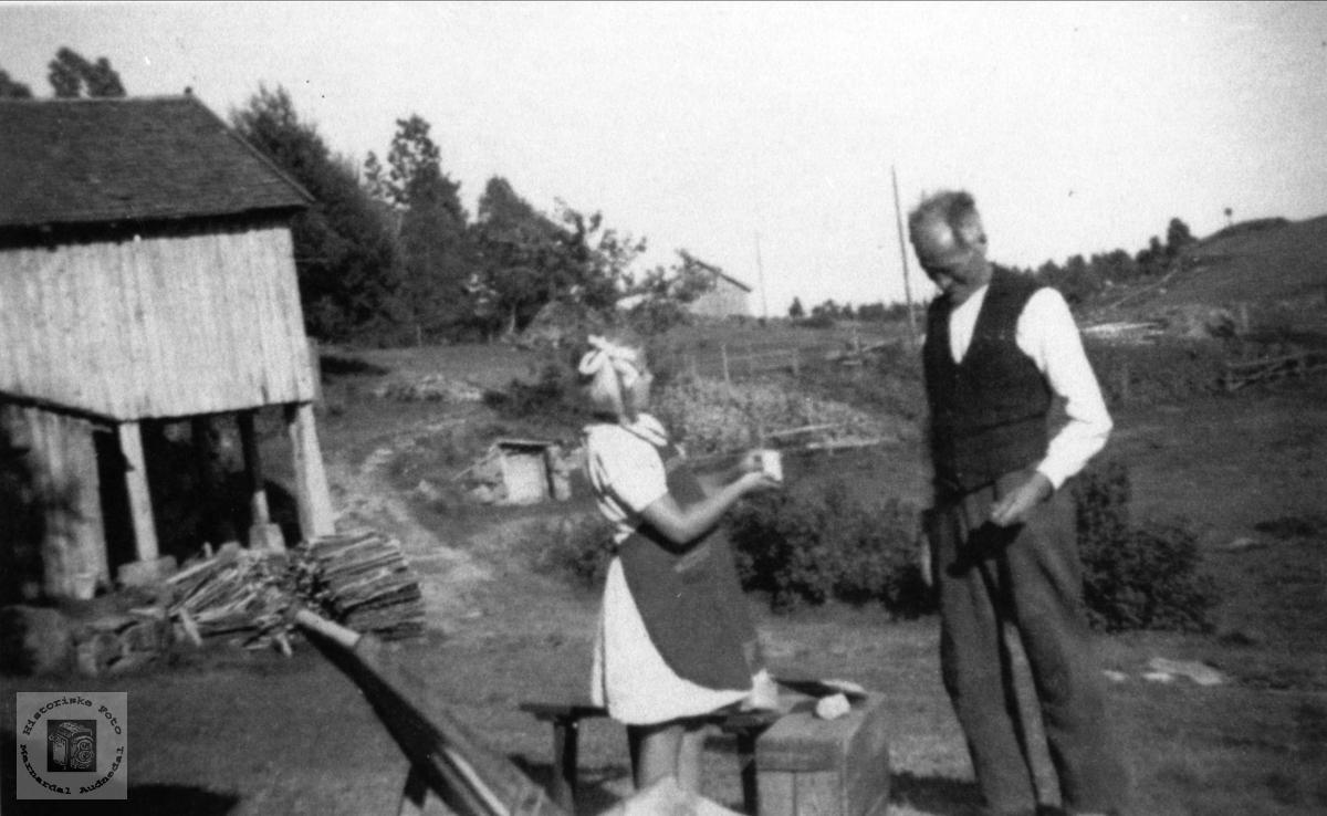På tunet Nedre Haraldstad i Laudal.
