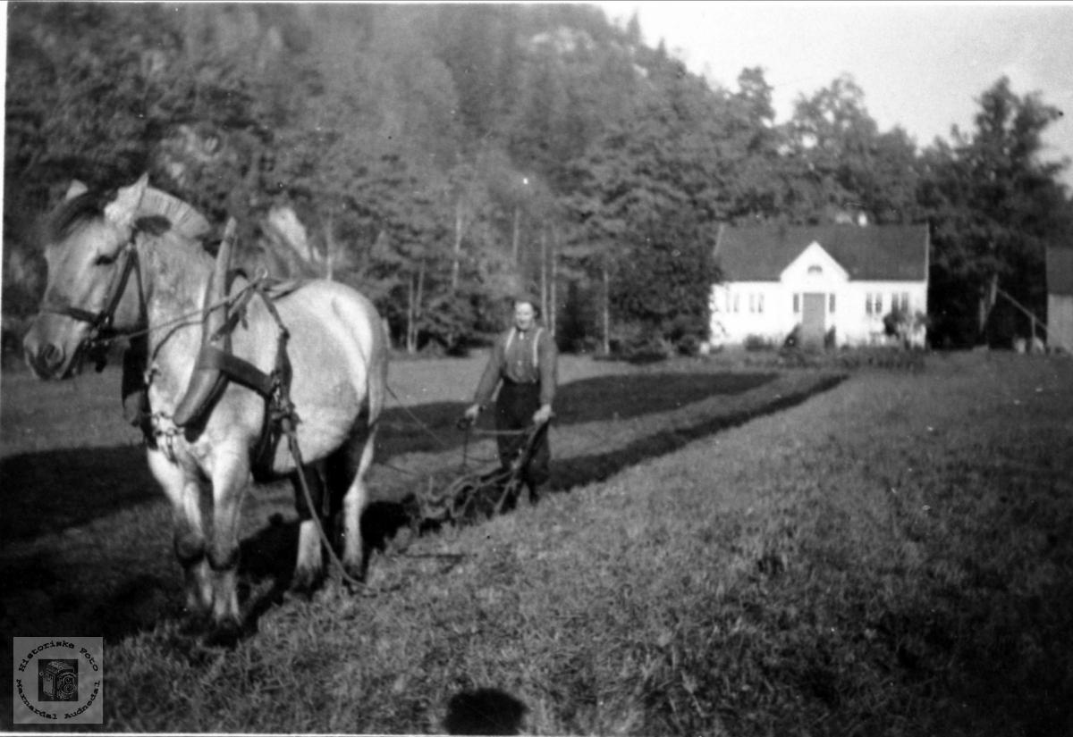Pløying på Lille Strædet, Finsland senere Marnardal.
