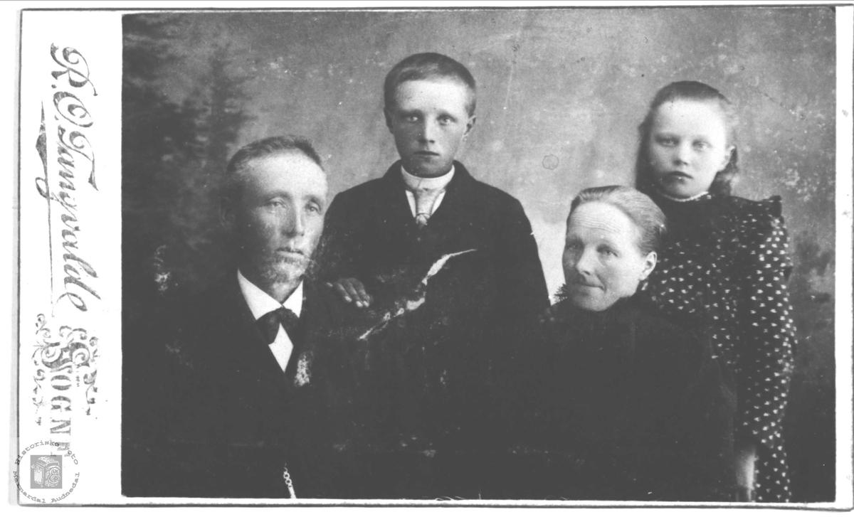 Familiegruppe Aasen, Øyslebø nå Søgne.