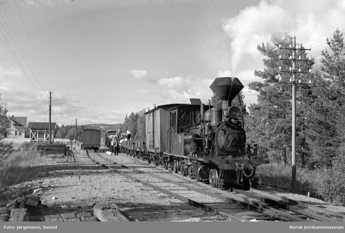 Godstog 5662, trukket av damplokomotiv nr. 2, på Hornesund holdeplass