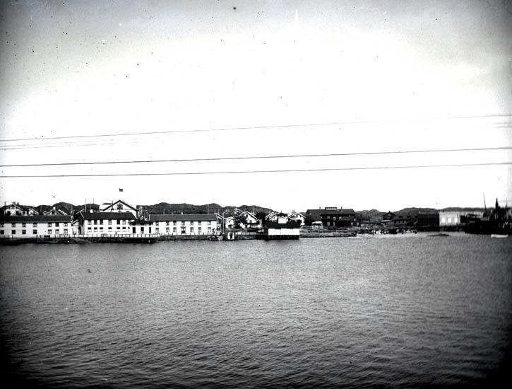 Koön, tagit ifrån balkongen den 10 Juni 1922 samt i sept. 1922. 3 st. + 2 st. Kopierade.