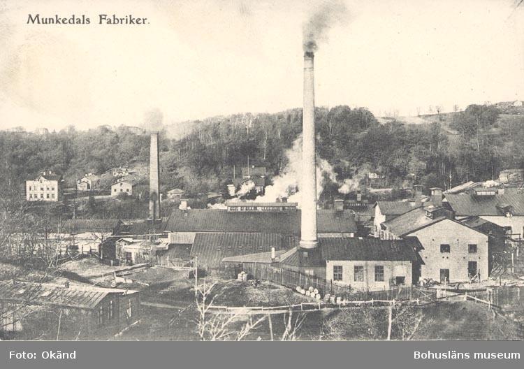 "Tryckt text på kortet: ""Munkedals Fabriker"". ""F. L. Schewenius förlag, Munkedal""."