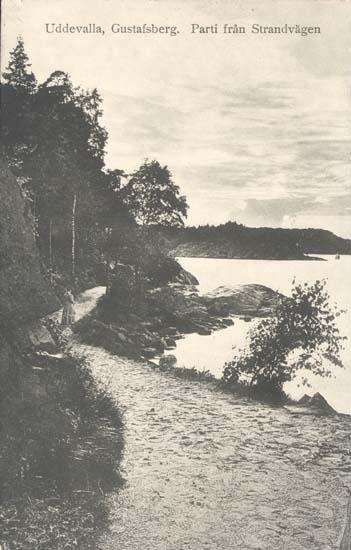 """Tryckt text på kortet: """"Uddevalla, Gustafsberg. Parti från Strandvägen."""" """"Uddevalla Pappershandel, Hildur Andersson."""""""