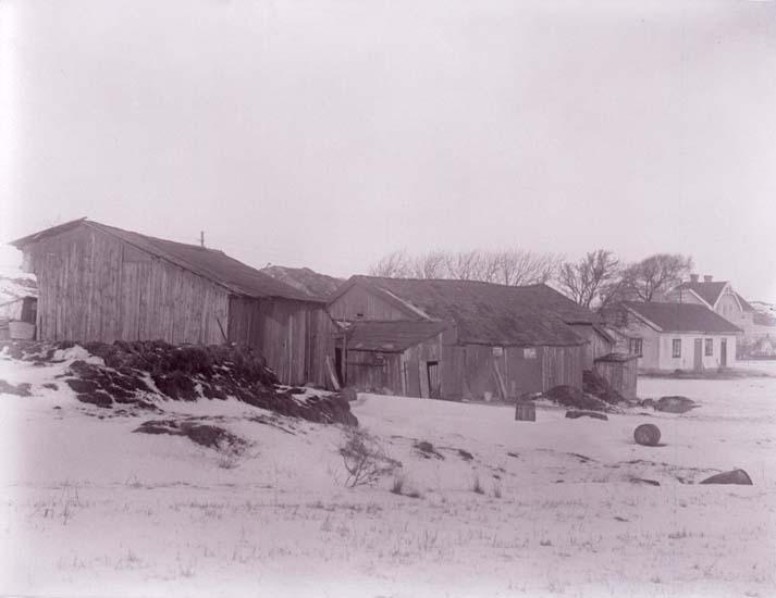 """Enligt text som medföljde bilden: """"Dalskogen 1926."""" Bostadshus med intilliggande lador i vintertid."""