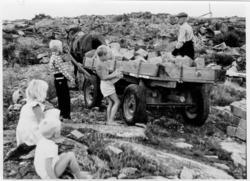 Transport av storgatsten i Valbodalen 1946