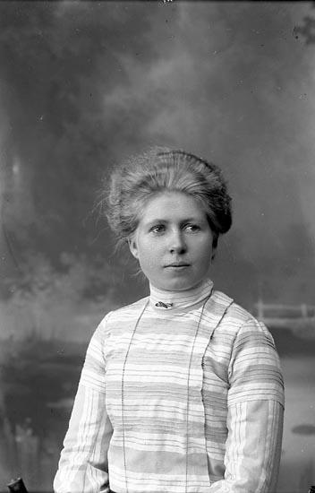 """Enligt fotografens journal nr 1 1904-1908: """"Josefsson, Fru Alice Westergården, Stenungsund""""."""