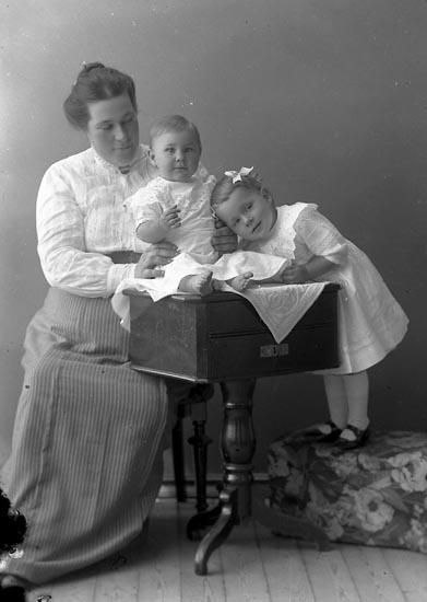 """Enligt fotografens journal nr 2 1909-1915: """"Fahl, Fru Anna Här""""."""