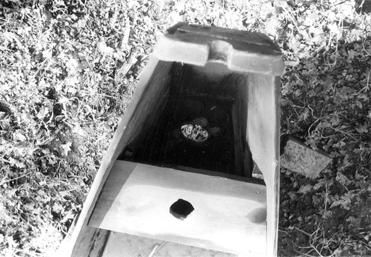 Skrivet på baksidan: Beeskow / Sprec? Stämplat på baksidan: 6 164  Fotona är tagna mellan 1966-09-11 - 1966-09-17.