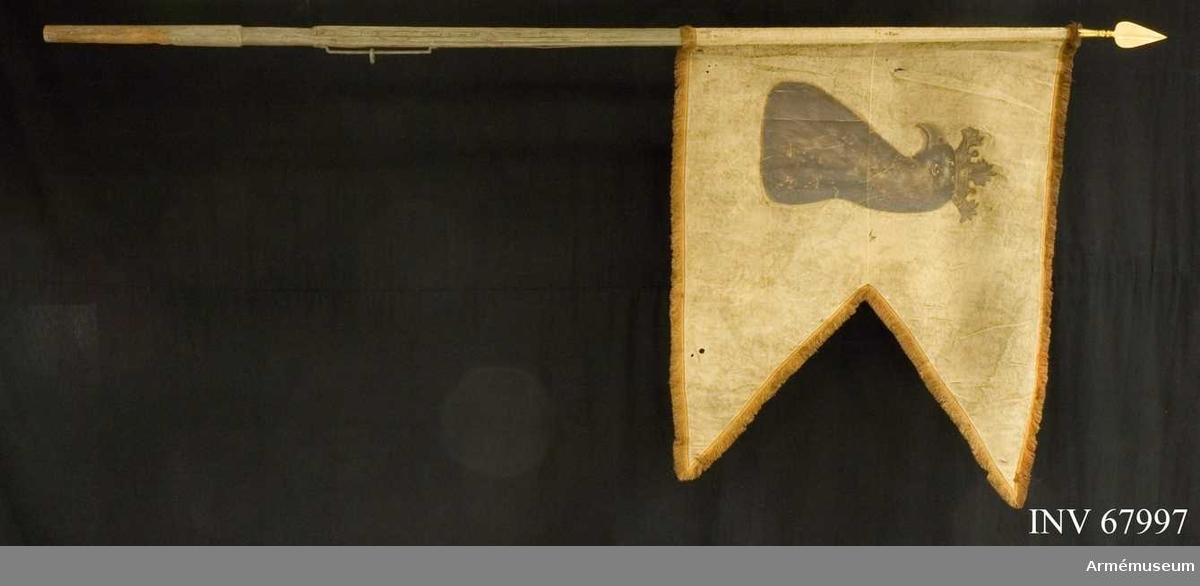 Duk: Tillverkad av enkel gul sidendamast. Tvåtungad. Sydd av två horisontella våder. Kantad med dubbel rödbrun silkesfrans (övre snibbens ytterkants frans inslag av något ljusare silke (ljusgrått). Mustigt mönter på damasten, mustigt mönster. Fäst vid stången med en rad tennlikor på gult mönstervävt sidenband.   Dekor: Målad omvänt lika på båda sidor Skånes sköldemärke: ett griphuvud i brunt krönt med öppen krona i silver.  Stång: Tillverkad av blågråmålad furu. Kanellerad över greppet, nedanför rund. Löpande bärring. Spets av förgylld mässing med hål för tre spikar. Nu fäst med en tennlika. Holk av förgylld mässing. Spets, lansettformad.