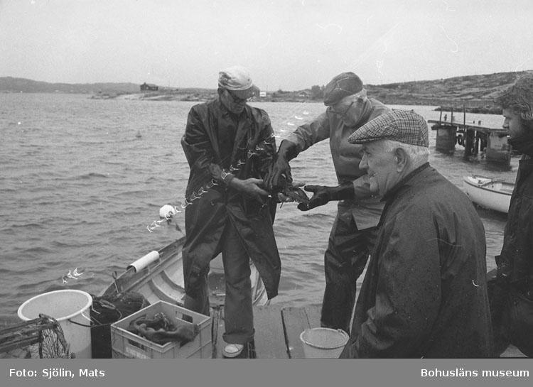 Hummerfiskarna Albert Johansson, Verner Lans och Karl Bruce på Ramsvik