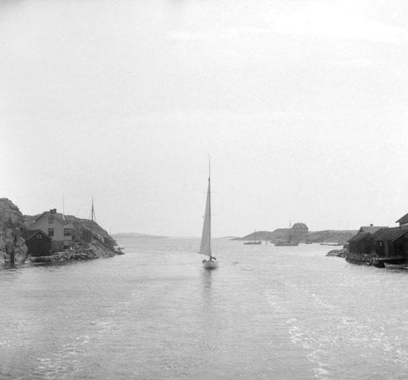 (Stereo karta XIV) Kyrkesund norrifrån, från båt. 17 Juni 1926.