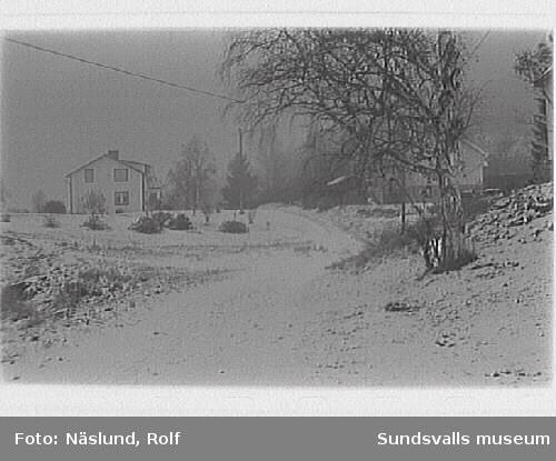 """Sundsvalls inventering.""""Centrala"""" delen, skolväg mot N"""