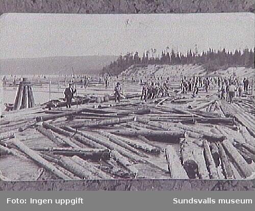 """Timmersortering i Ljungan: """"i höjd med Starkotters grav ovanför nipan."""" Uppgifterna från Gertrud Blomqvist, Matfors."""
