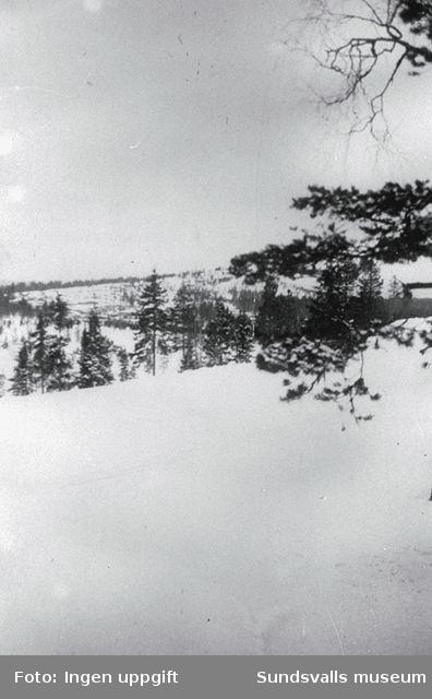 """Hökberget."" (Bildtext i fotoalbum. Ägare Emil Tessem, Steinkjer.)Vintern 1945."