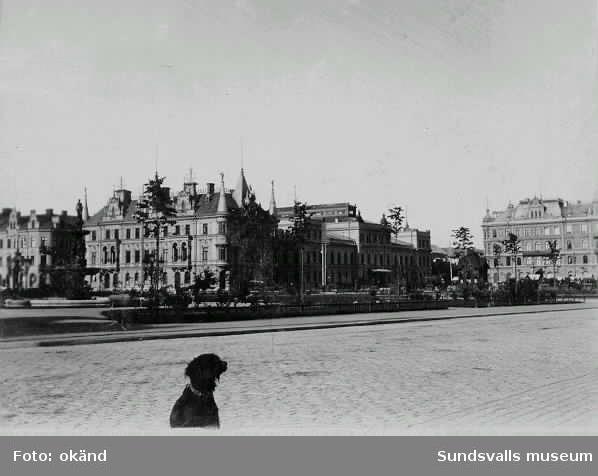 Vy från Storgatan mot fr v Rätten, Stadshuset, Nyttan. Den nyplanterade Vängåvan i förgrunden.