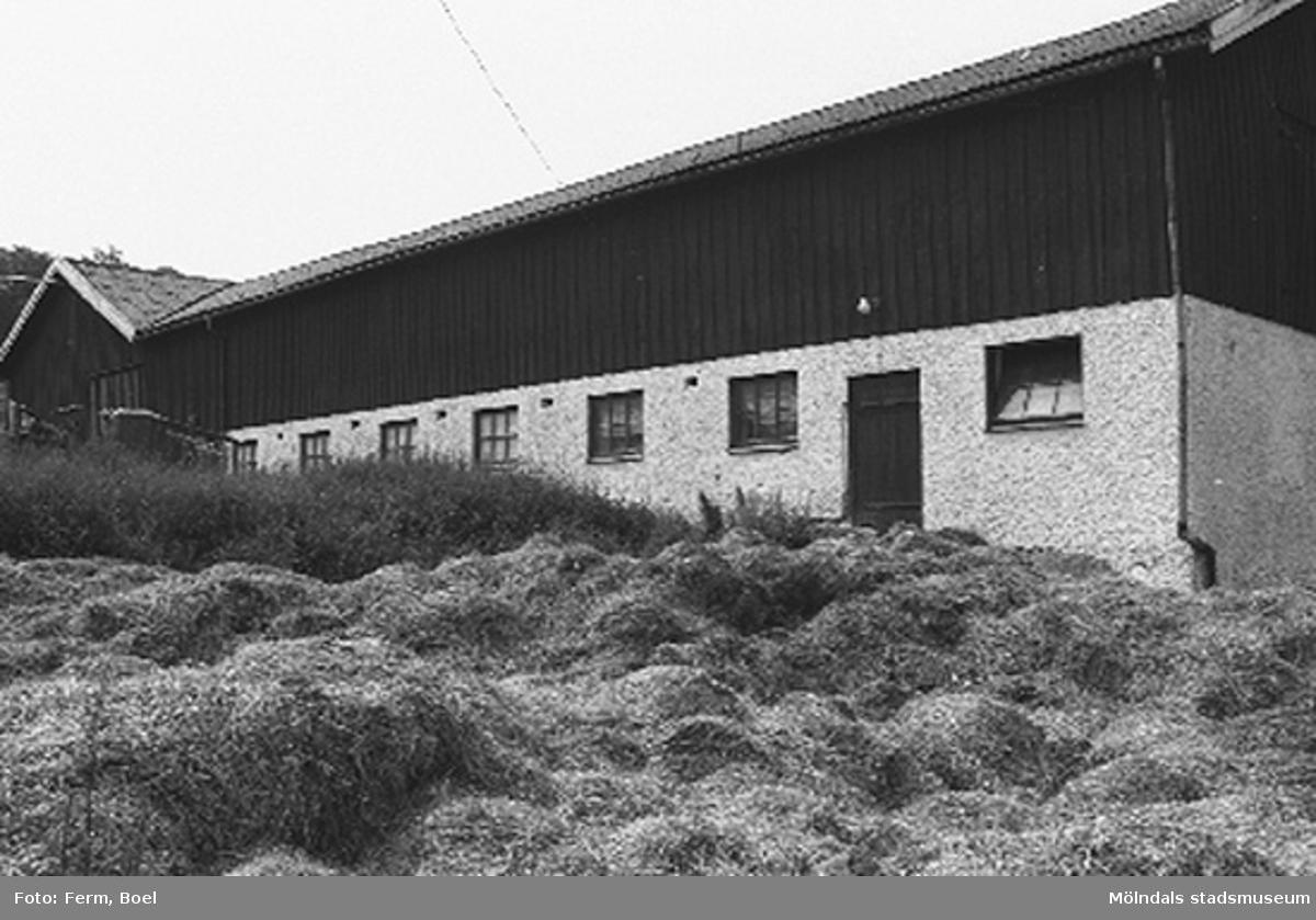 Ladugård, med möjligt hö på baksidan.Lunnagården i Balltorp 1992-06-30.