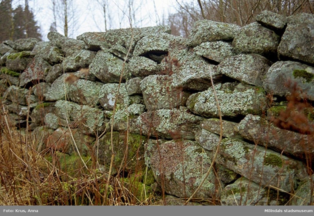 Hägnaderna/Västra Hägna - fägatan, detalj stenmur.