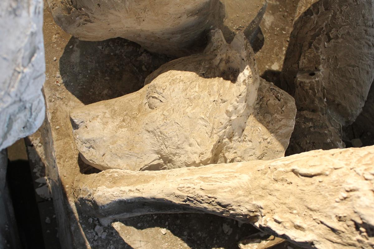 """Skulptur i gips av Roald Amundsen med hund i full størrelse. Inskripsjon: """"ROALD AMUNDSEN 18?? - ??72"""", """"ALLTID MOT NYTT MÅL"""".  Se også nr.032, nr.038, nr.041, nr.042, nr.53, 068, nr.109, nr.118 og nr.200. Monumentet ble støpt i bronse, 2,80cm. høy, anbrakt på en sokkel like utenfor Amundsens hjem på Svartskog. Avdukingen ble foretatt 27 august 1972 til han 100 års-jubileum.  Se også (hode) nr.068"""